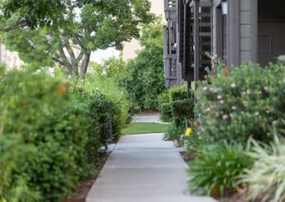 Lush landscaping along the sidewalk at Crestwood Apartment Homes